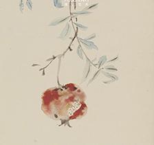 画家李夏夏2015年作《石榴图》